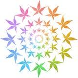 Cirkels van kleurrijke bladeren die op wit worden geïsoleerde. Stock Afbeeldingen