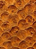 Cirkelshell spiraalvormige achtergrondpatroontextuur op aarden royalty-vrije stock foto