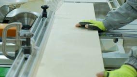Cirkelzaag in actie, timmerman die bladen van triplex verwijderen Vervaardiging van houten meubilair stock foto
