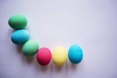 cirkla den din kulöra vektorn för temat för text för avstånd för easter ägg eps10 Ägg med tulpan på träbrädet, easter feriebegrep Royaltyfria Foton