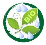 Cirkla etiketten för bio produkt med gröna blad- och vattendroppar i grungegräsplanram Royaltyfria Foton