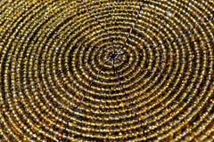 cirklar guld- Royaltyfri Foto