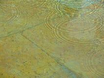 Cirklar i vatten Royaltyfria Bilder