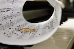 Cirklar på pianot Royaltyfri Foto