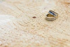 cirklar två som gifta sig Royaltyfri Fotografi