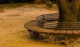 Cirkuläret parkerar bänken med järnstångbackresten runt om ett stort träd Arkivbild