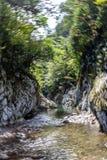 Cirkulering i naturen - vatten, land, växter, luft, Krasnodar region, Ryssland royaltyfria foton