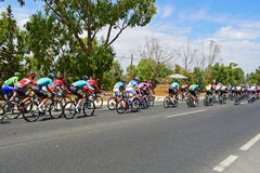 Cirkulering som springer Peleton La Vuelta España arkivfoton