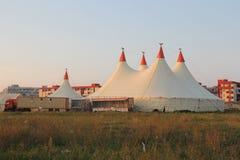 cirkus Royaltyfri Fotografi