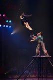 cirkus Arkivbild
