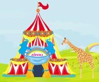 Cirkus med djur Arkivfoton