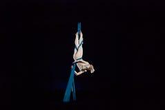 Cirkusartister arkivfoton
