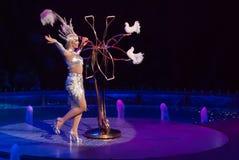 Cirkusartister Fotografering för Bildbyråer