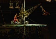 cirkusartistrelikskrin Arkivbild
