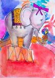 Cirkuselefantvattenfärg Vektor Illustrationer