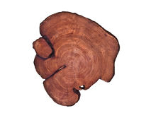 Cirlce wooden board. Cut log showing tree rings and cracks stock photo