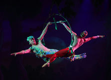 Cirque作梦(密林幻想), heatrical杂技马戏perfo 库存图片