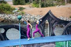 Cirque De La Mer Show, SeaWorld, San Diego, California Royalty Free Stock Image