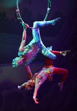 Cirque drömmer (djungelfantasin), den heatrical akrobatiska cirkusperfoen Royaltyfri Fotografi