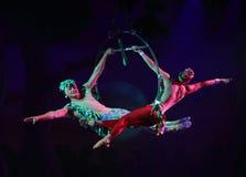 Cirque drömmer (djungelfantasin), den heatrical akrobatiska cirkusperfoen Fotografering för Bildbyråer