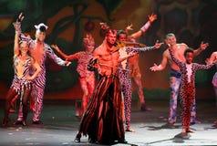 Cirque drömmer (djungelfantasin), den heatrical akrobatiska cirkusperfoen Royaltyfri Foto