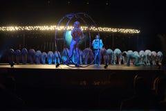 cirque Du Soleil Obrazy Stock
