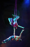 Cirque Marzy, heatrical akrobatyczny cyrkowy perfo (dżungli fantazja) Zdjęcia Royalty Free