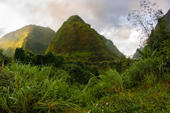Cirque of Salazie, in Reunion island Stock Image