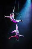 Cirquedromen (Wildernisfantasie), heatrical acrobatische circusperfo Royalty-vrije Stock Afbeeldingen