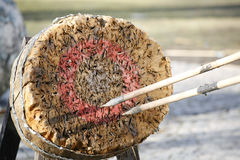 Cirrcle archery and javelin target outdoor as background illustr Royalty Free Stock Images