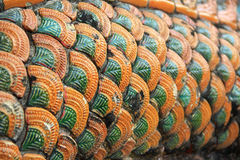 Ciérrese encima de la escala de la textura de la serpiente Foto de archivo libre de regalías