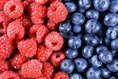 Ciérrese encima de los arándanos y de las frambuesas orgánicos frescos Ricos con las vitaminas fondo, textura Fotografía de archivo