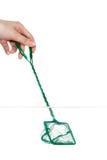 Ciérrese para arriba de la mano con la red de aterrizaje en fishbowl Imagen de archivo libre de regalías