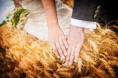 Ciérrese para arriba de las manos de los recienes casados con los anillos de bodas sobre los oídos del whe Foto de archivo libre de regalías