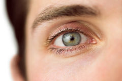 Ciérrese para arriba de a sirve el ojo Foto de archivo