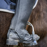 Ciérrese para arriba de una bota de montar a caballo sucia Fotografía de archivo libre de regalías