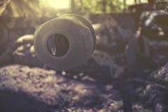 Ciérrese para arriba en el cañón Imágenes de archivo libres de regalías