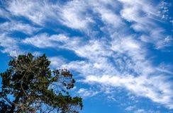 Cirriform moln Arkivbilder