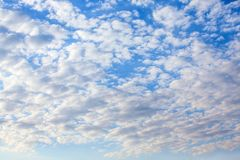 Cirrocumulus Cloud in blue sky stock photos