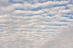 Cirrocumulus clouds above the horizon Stock Images