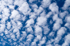 Cirrocumulus clouds against blue sky Royalty Free Stock Images
