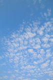 Cirrocumulus clouds Royalty Free Stock Photo