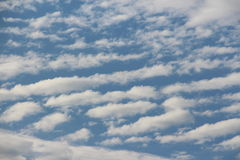 Cirrocumulus Stock Photography