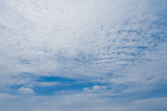 Cirrocumulus cloudscape Stock Images