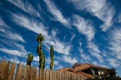 Cirrus σύννεφα - Αυστραλία Στοκ Εικόνες