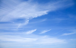 Cirrus clouds. Sky with beautiful bright cirrus clouds stock photo