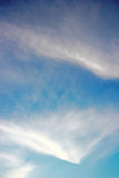Cirrus clouds against the dark blue sky. For a background. stock images