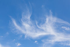 Cirrus clouds. In the blue sky Royalty Free Stock Image