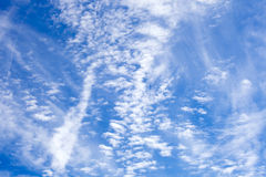 Cirrus clouds in the blue sky. The Cirrus clouds in the blue sky Royalty Free Stock Photo