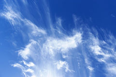 Cirrus clouds in the blue sky Royalty Free Stock Image